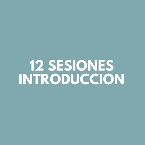 12 Sesiones INTRODUCCION