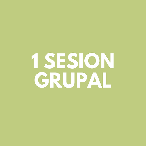 1 Sesion Grupal