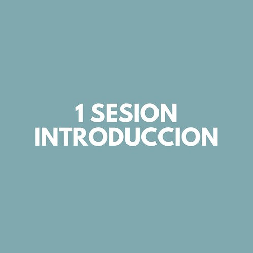 1 Sesion INTRODUCCION