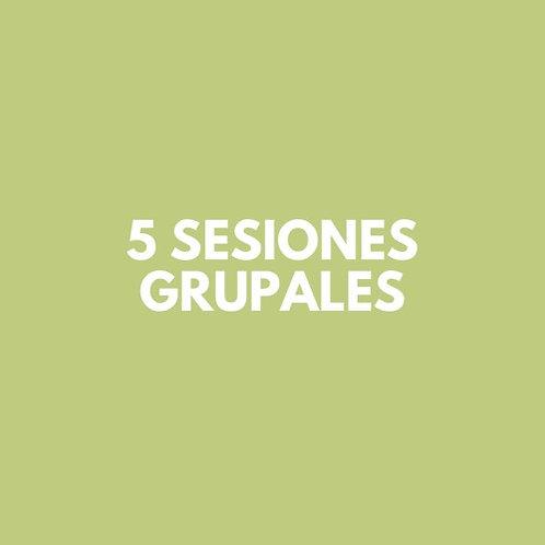 5 Sesiones Grupales