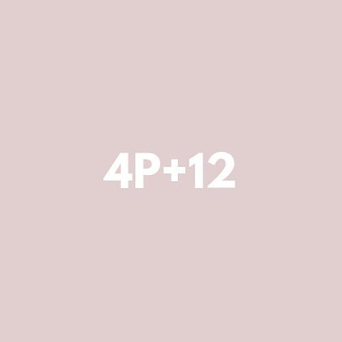4 Privadas + 12 Grupales