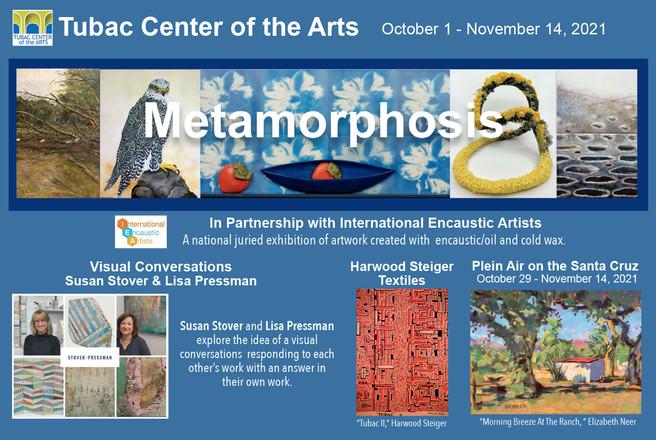 Metamorphosis Opening Soon