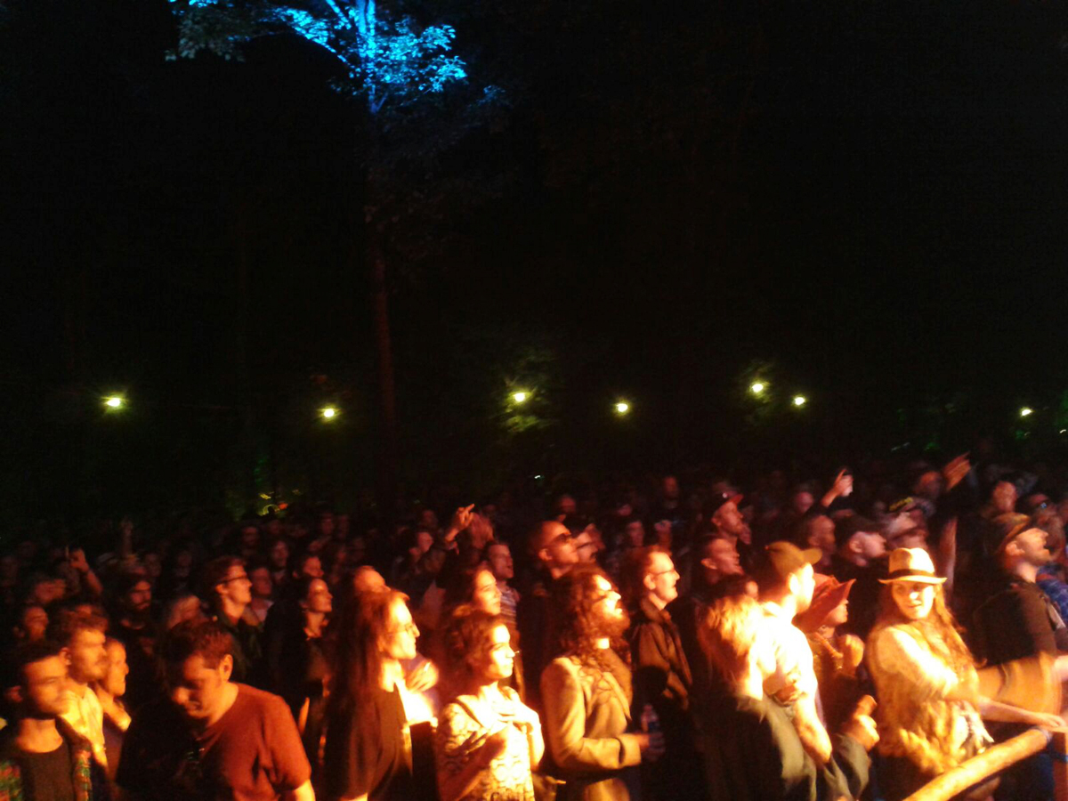 crowd_4