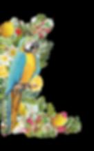 perroquet_bleu_tourné_vers_la_droite.png