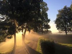 Magisk morgonenergi