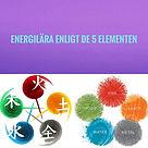 5 elementen SES.jpg