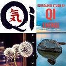 Qi SES.jpg