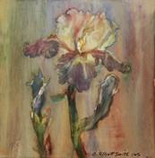 Carol Elliot Smith