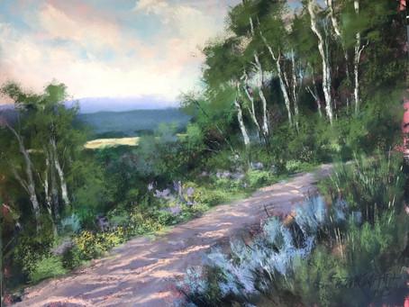 Bonnie Zahn Griffith - 2019 We Art Women Artist