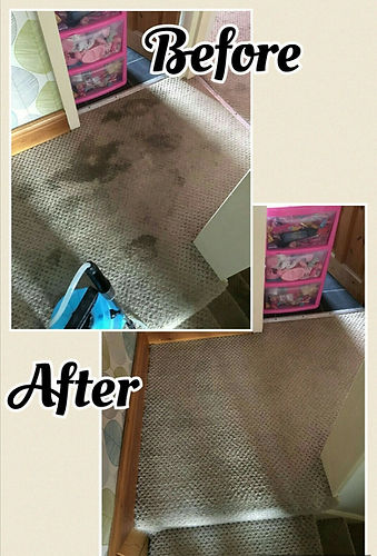 carpet cleaning stockport