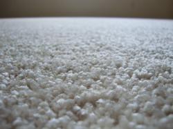 Carpet_Clean