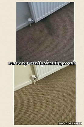 radiator leak stain removal