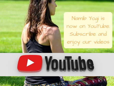 Namib Yogi is now YouTube!