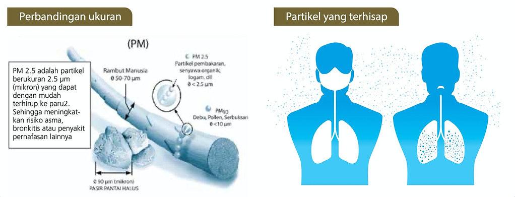 PM 2.5.jpg