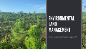 What Is Environmental Land Management?