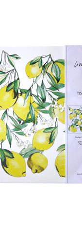 Tischsets Papier Limoncino Kopie.jpg