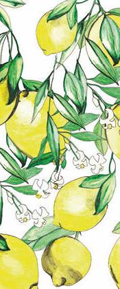 postkarte_limoncino_zitronen.jpg