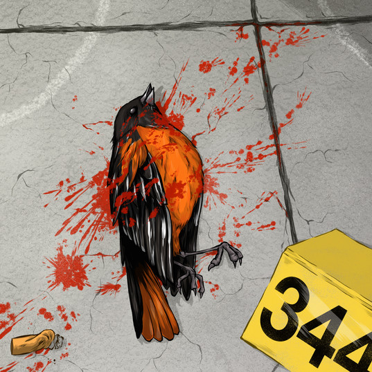 Baltimore Homicide Rate