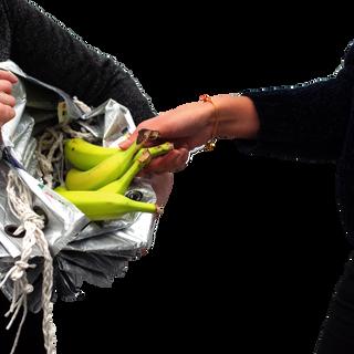 Banana Armour
