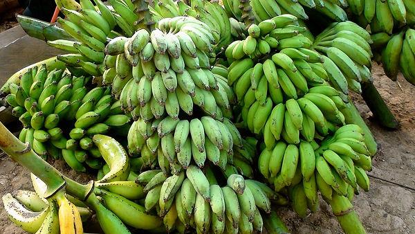 bananas-1425327_1280.jpg