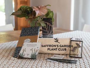 SAFFRON'S GARDEN PLANT CLUB