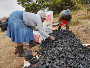 ECO CHARCOAL BOOSTS SA's WATER SECURITY
