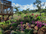 GARDENS WITH COLOUR, TEXTURE AND PERSONALITY