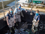 V & A WATERFRONT SUPPORTS WORLD OCEANS DAY