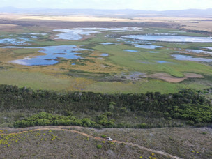 NUWEJAARS WETLANDS PROJECT AND ECOLOGICAL RECOVERY