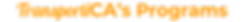 Website%20Headers(4)_edited.png