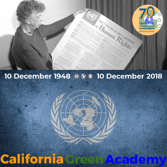 CalGreen's Board Permanently Implements the Universal Declaration of Human Rights in Governance