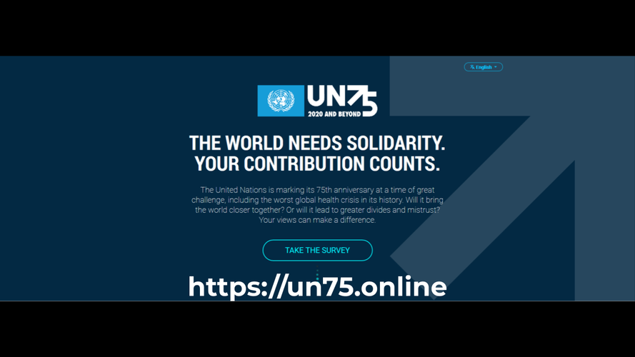 UN Global Survey