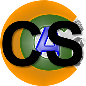 CS-Consulting-Circle.png