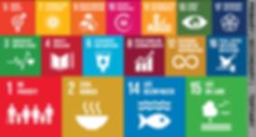 CalGreen SDGs.png