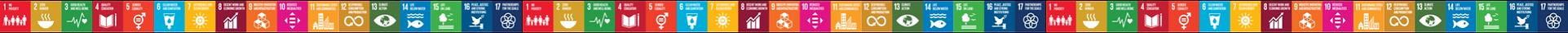 SDG Horizontal Image.png