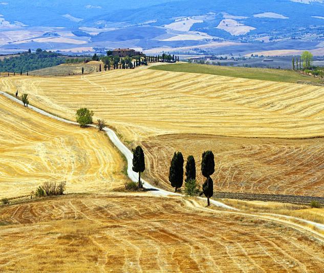 crete-senesi-provincia-siena 3 copia.jpg