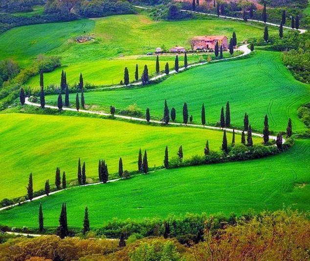 Tuscany hill 7 copia.JPG
