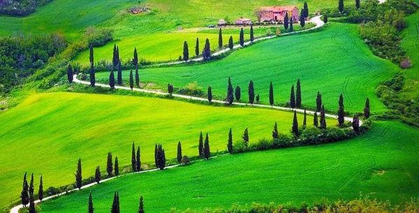 Tuscany hill 7 copia_edited.jpg