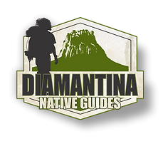 LOGO Diamantina Native Guide 26.png