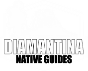 LOGO Diamantina Native Guide white.png