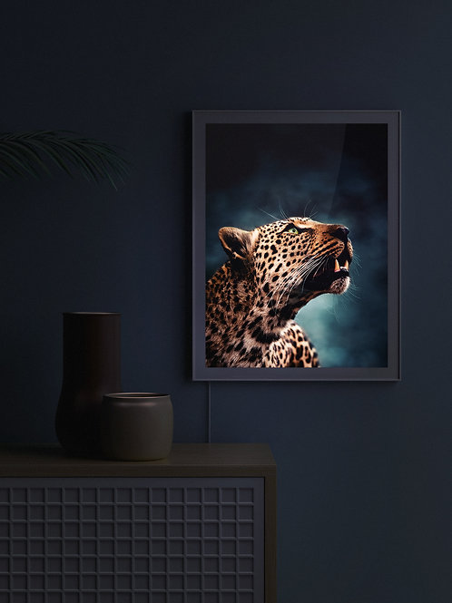 Leopardess Portrait | Lightbox