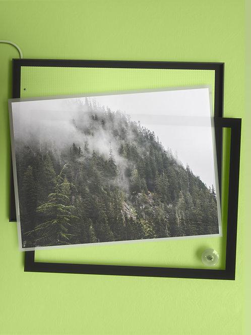 Mist and Shadow | Film Insert