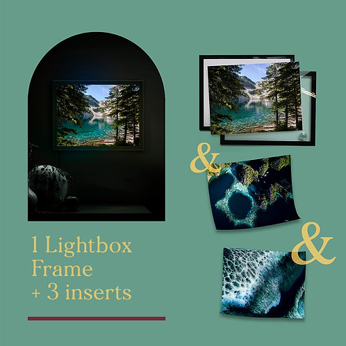 Nature collection | Lighbox+3 inserts