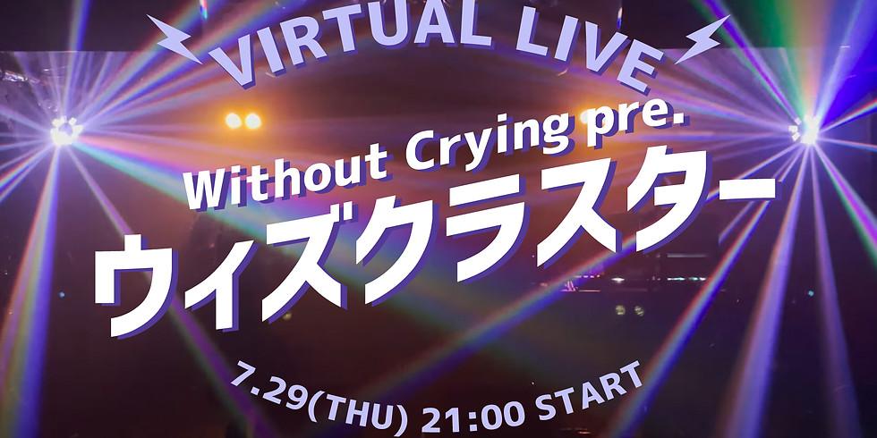 Virtual Live Concert