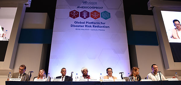 UNISDR Panel Mexico 2017.jpg