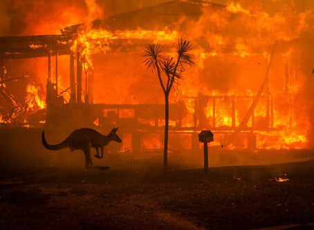"""""""Our Country is Burning"""": Indigenous take on Australian wildfires"""