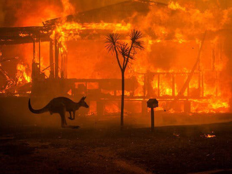 """Our Country is Burning"": Indigenous take on Australian wildfires"
