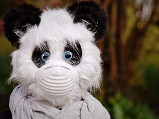 Maskenpflicht in der Grundschule ab Montag