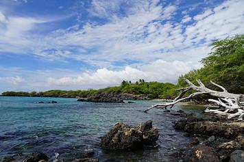 Waialea Beach /  Island of Hawaii