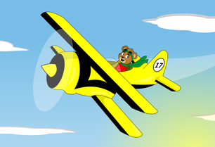 Teddy Flying A Bi-Plane